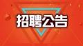 共招6人!交五险一金!文昌东郊招聘专职人民调解员和